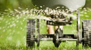 Машинка для посева газона